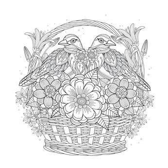 Adult Coloring Book Birds in Basket Picture